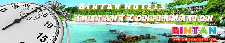 Bintant Hotel Instant Confirmation