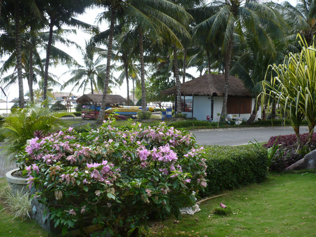 Bintan Agro Beach Resort Garden View